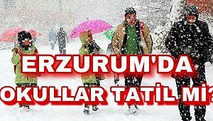 Erzurum'da okullar yarın tatil mi?