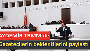 Aydemir TBMM'de gazetecilerin beklentilerini paylaştı