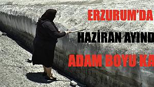 Erzurum'da Haziran ayında adam boyu kar!