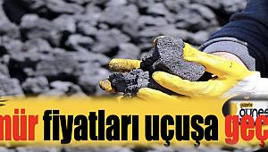 Kömür fiyatları uçuşa geçti